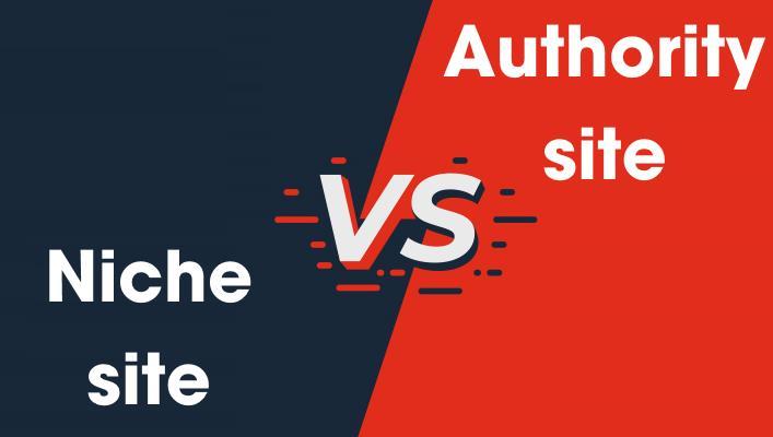 niche vs authority