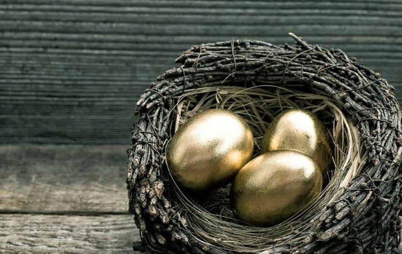đừng cho hết trứng vào một giỏ